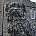 Picture of the Statue of Edinburgh's famous faithful fido
